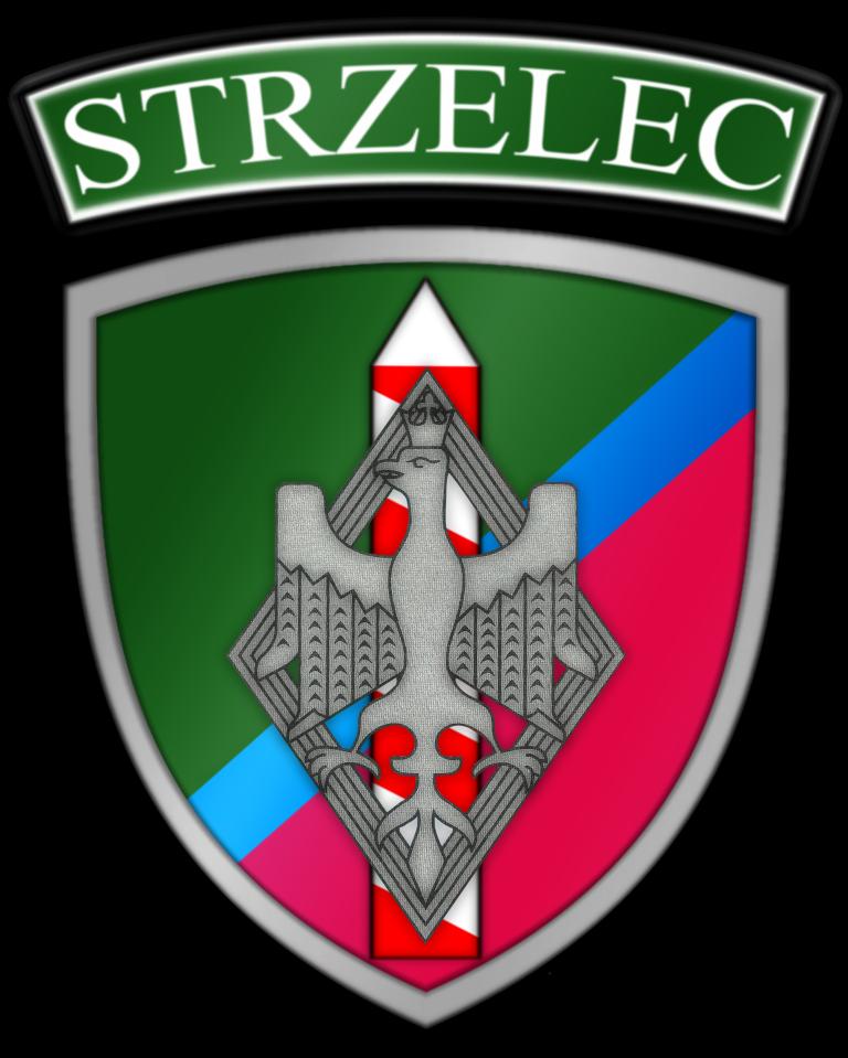 Jednostka Strzelecka 2019 w Tomaszowie Lubelskim